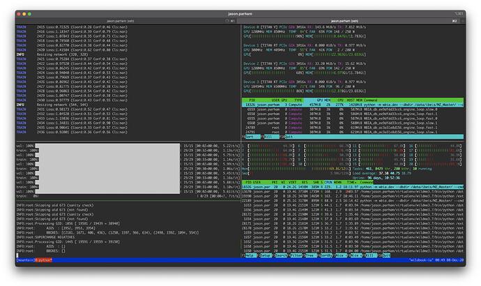 Screen Shot 2020-12-08 at 12.50.00 AM